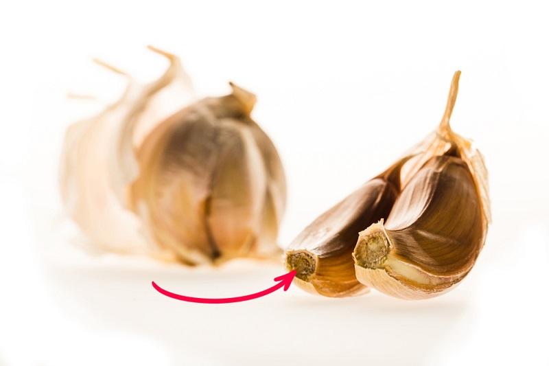 Посадка озимого чеснока: маленькие хитрости для крупных головок. Благоприятные дни и тонкости подготовки.